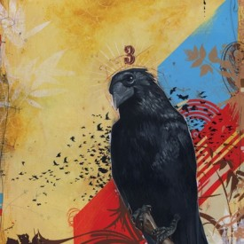 Grandfather Raven